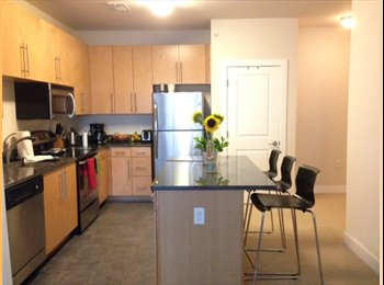 Great Noma Apt:  Private room/bathroom with great amenities...