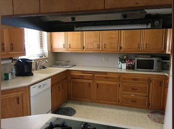 Room Available in 3/2 Spacious Quiet House