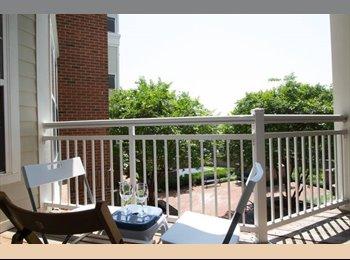 EasyRoommate US - Arlington Furnished Spacious Private Room&Bathroom.  Free Parking. - Arlington, Arlington - $990 /mo