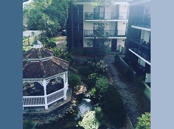 Cute Apartment in Downtown Orlando!
