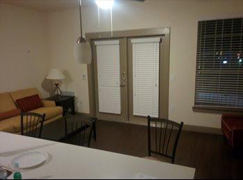 EasyRoommate US - $950 all inclusive Luxury 2 bed apt, Prv Bd/Bath on offer - Westminster, Denver - $1,000 /mo