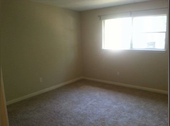 Room to rent in a spacious 4-bedroom house in southwest...