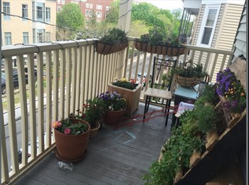 $800 Looking for a 4th roommate (August 2016-7) (Inman...
