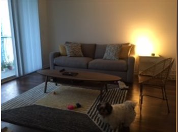 EasyRoommate US - Looking for a short term roommate, Miami - $1,200 /mo
