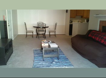 Room for rent in spacious apartment!