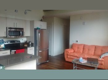 Roommate Wanted in Pioneer Square