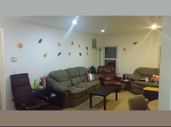 Large Room for Rent Port Jefferson near SBU