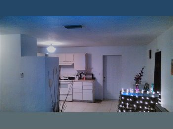 EasyRoommate US - 2 rooms available, St Petersburg - $500 /mo