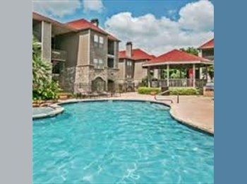 EasyRoommate US - Looking for a reliable roommate for a great Olmos Park apartment! , San Antonio - $640 /mo