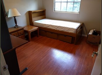 EasyRoommate US - 2 rooms for rent in house close to UF campus, Gainesville - $500 /mo