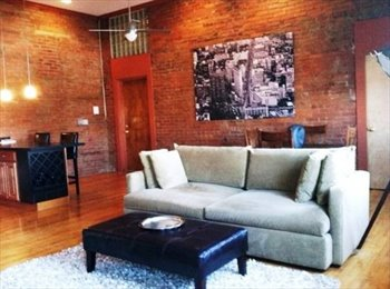 EasyRoommate US - Beautiful Apartment in South Side Works, Pittsburgh - $800 /mo