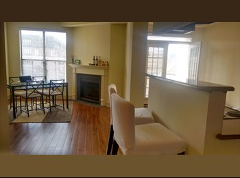 Entire Apartment in the post Worthington! McKinney Av.