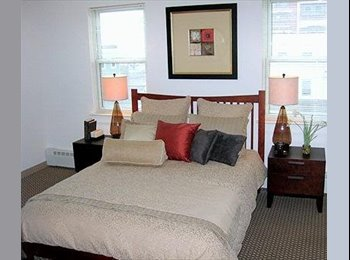 COZY Appart in East Boston, AMAZING VIEW of DOwntown boston