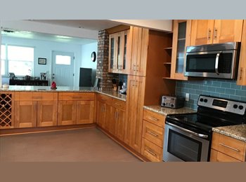 Urban Professional Living In Beautifully  Remodeled House!