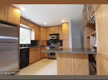EasyRoommate US - Cool Place to Live, Alexandria - $950 /mo