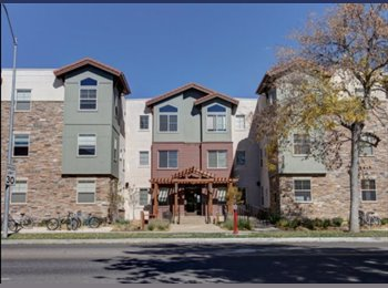 EasyRoommate US - 1 bedroom and private bath for rent, Fort Collins - $745 /mo