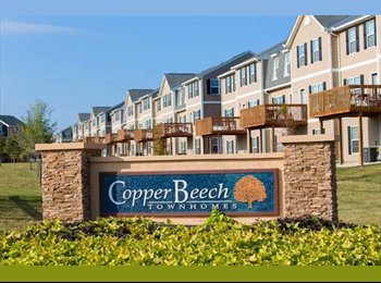 EasyRoommate US - Copper Beech **ROOM AVAILABLE FOR A FEMALE TENANT** Fully Furnished - 4 bedroom, 4.5 bathrooms, 2000, San Marcos - $530 /mo