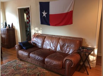 Roommate Needed