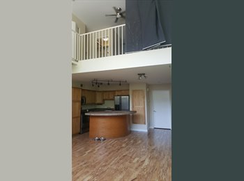 Loft style room for rent in the perfect downtown location