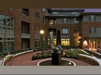 EasyRoommate US - bedroom and private bath in luxury building, Watertown - $1,200 /mo