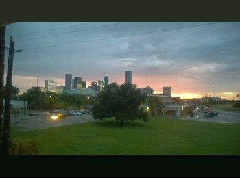 EasyRoommate US - EaDo Townhome, Houston - $1,200 /mo