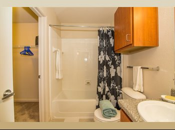 EasyRoommate US - Affordable Apartment Close to UNR Campus, Reno - $595 /mo