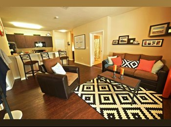 EasyRoommate US - 4 Bedroom Spring Place Apartments, Greensboro - $465 /mo