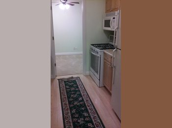 roommate wanted in Naperville downtown