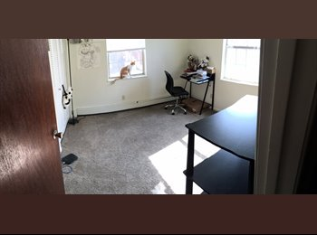 EasyRoommate US - room for rent - bowling green, oh, Bowling Green - $350 /mo