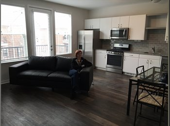 EasyRoommate US - CCS Student Special - flee the dorm!  WSU welcome too!, Detroit - $750 /mo