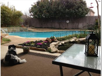 EasyRoommate US - 1000 month 3 br 2 bath- offering master- pool and fish pond, Sachse - $1,000 /mo