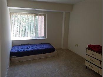 EasyRoommate US - Room available in Framingham, Framingham - $950 /mo