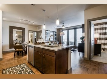 EasyRoommate US - Very nice 2 bedroom for rent!, Dallas - $1,950 /mo