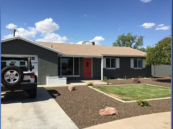 EasyRoommate US - Room for rent! Looking for young professional! , Scottsdale - $540 /mo