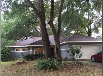 EasyRoommate US - Room for rent in nice home with new appliances, carpet, in great location, Gainesville - $400 /mo