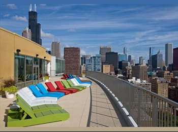 GORGEOUS Apartment Available in South Loop!