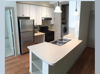 EasyRoommate US - Great Camden apartment in Midtown, Houston available mid September!! , Houston - $900 /mo
