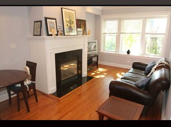 EasyRoommate US - Looking for female roomie!!, Chicago - $800 /mo