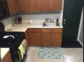 EasyRoommate US - Professional 24 year old female searching for roommate for Point Breeze Rowhome, Philadelphia - $575 /mo