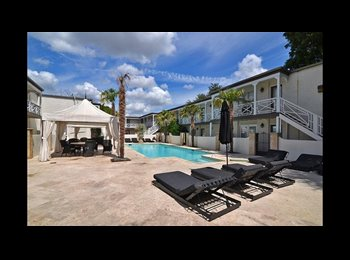 EasyRoommate US - Awesome, caribbean resort style apartment, Dallas - $800 /mo