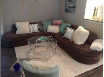 EasyRoommate US - Beautiful, large apartment near the med center!, Houston - $897 /mo
