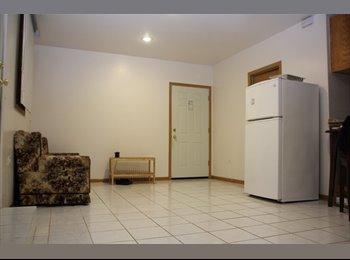 EasyRoommate US - 1 bedroom for rent in Bridgeport area in Chicago, Bridgeport - $500 /mo