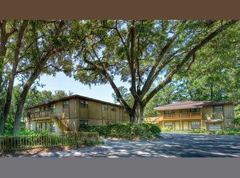 EasyRoommate US - FALL '16 SUBLEASE OR FULL YEAR SUBLEASE, Gainesville - $640 /mo