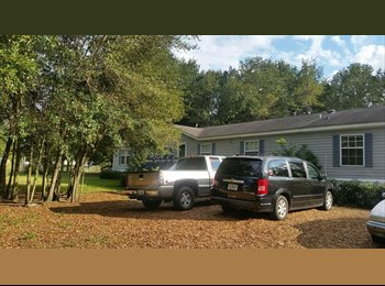 EasyRoommate US - ROOMS FOR RENT IN GIANT MAN CAVE! , Lakeland - $550 /mo