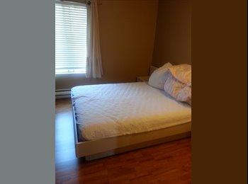 EasyRoommate US - Bellevue Downtown Room for Rent, Bellevue - $850 /mo