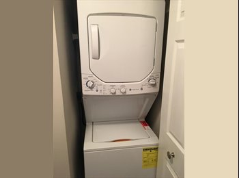 EasyRoommate US - Room for Rent in Nice Apartment Complex (North Raleigh), Raleigh - $450 /mo