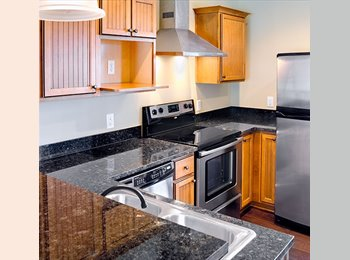 EasyRoommate US - Apartment for lease, Lubbock - $525 /mo
