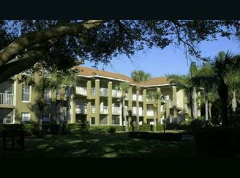 EasyRoommate US - looking for Christian female or single mom roommate in palm harbor, St Petersburg - $500 /mo