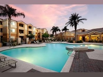 Looking for one more roommate at Apache Station Apartments!