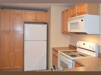 EasyRoommate US - Roomate wanted to share 2 bed, 2 bath apartment in downtown Manchester, Manchester - $895 /mo